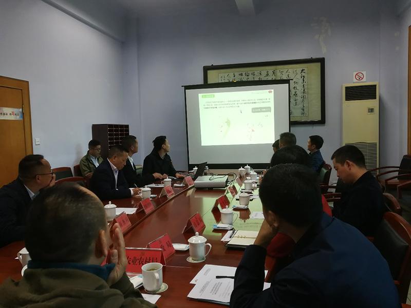 杨健祥董事长汇报规划方案