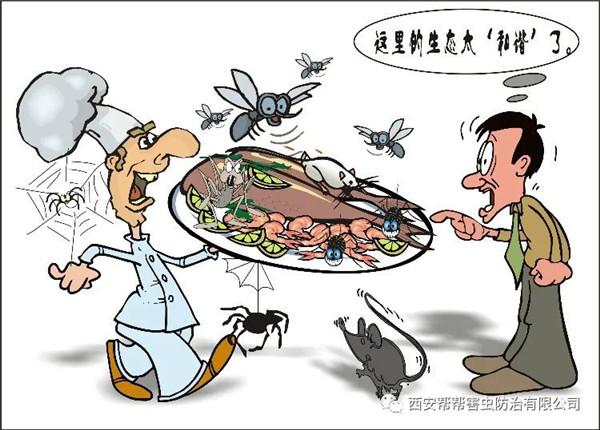 西安帮帮害虫防治--蟑螂怎么除