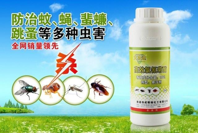 大功达——西安灭蚊蝇