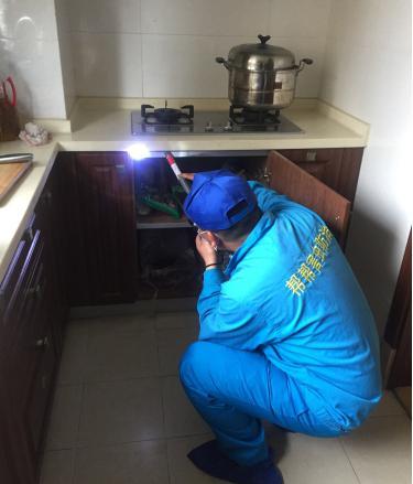 家庭虫害防治服务