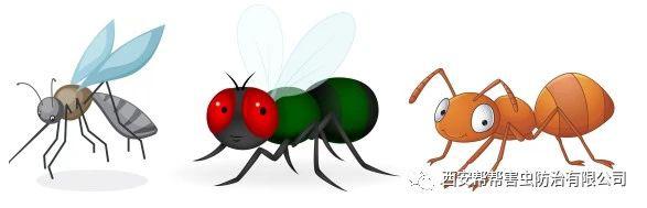 食品加工业-蚊蝇防治