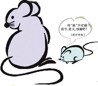 医院-鼠类防治