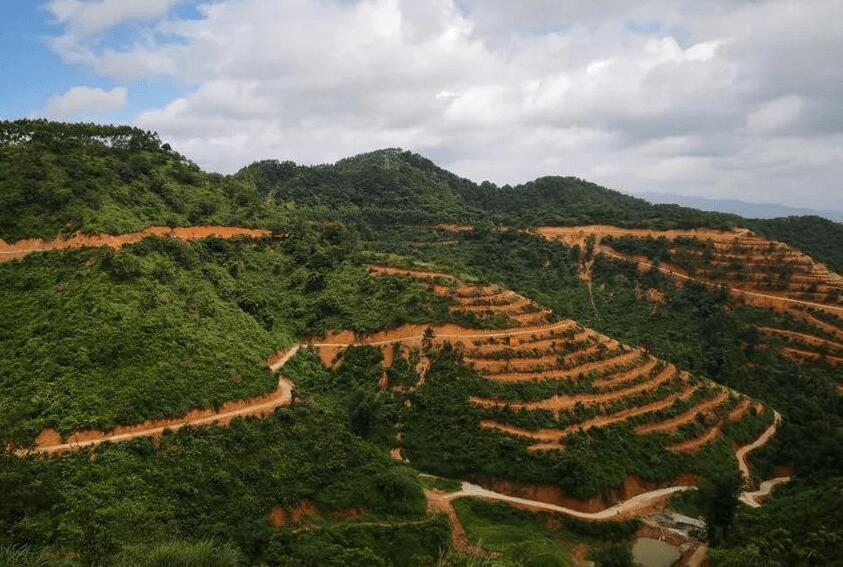 国jia中药材产业技术体系:因地制宜发展中药材种植