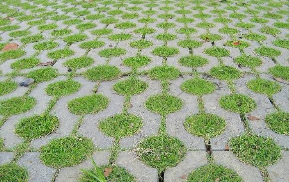 跟着襄阳振金发一起来了解植草砖的8个特点!