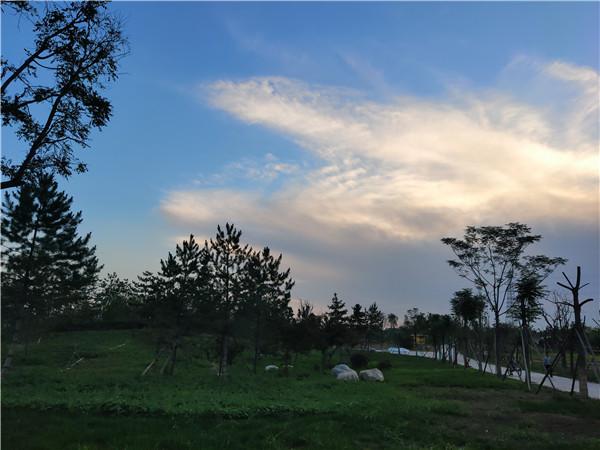 关于陕西公园绿化景观设计需考虑的3点
