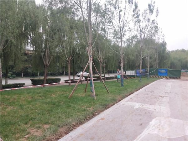 景观绿化养护工程