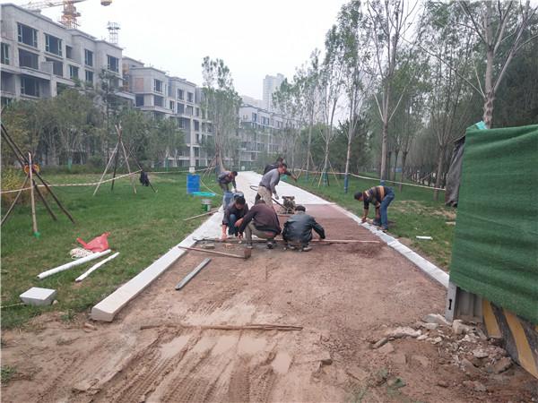 陕西透水生态系统项目