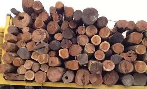 新疆木材批发