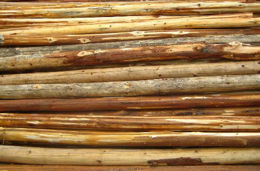 景点中常用木材有哪些?难道景点的木都不是同一种吗?