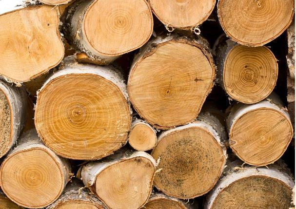 """木材中的""""水""""竟然也有很大的不同种类!!!"""