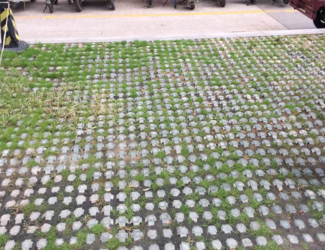 陕西草坪砖施工案例