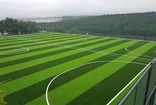 四川体育场所人造草坪