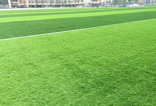 怎样去选择仿真草坪?