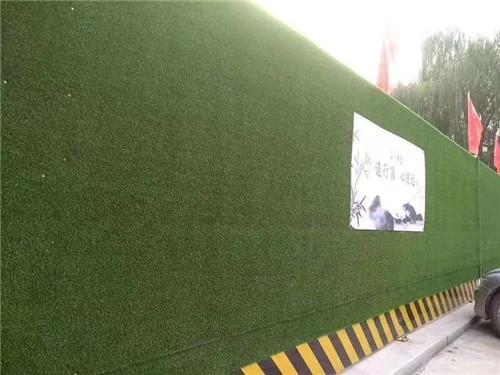四川围挡草坪厂家