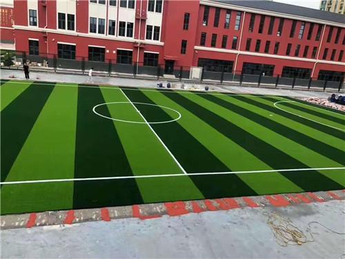四川学校运动草坪
