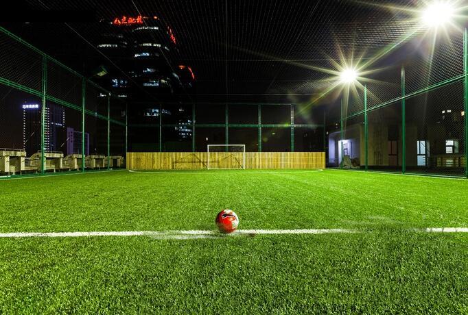干货来啦:如何选择足球场草坪?