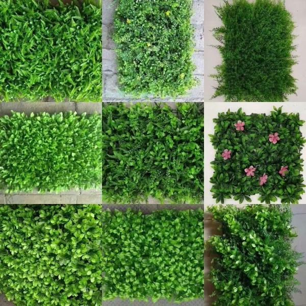 怎样使四川草坪更好地生长?