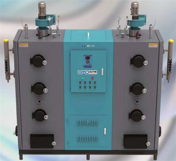 LPD双体式生物质蒸汽发生器(0.4-0.6t)