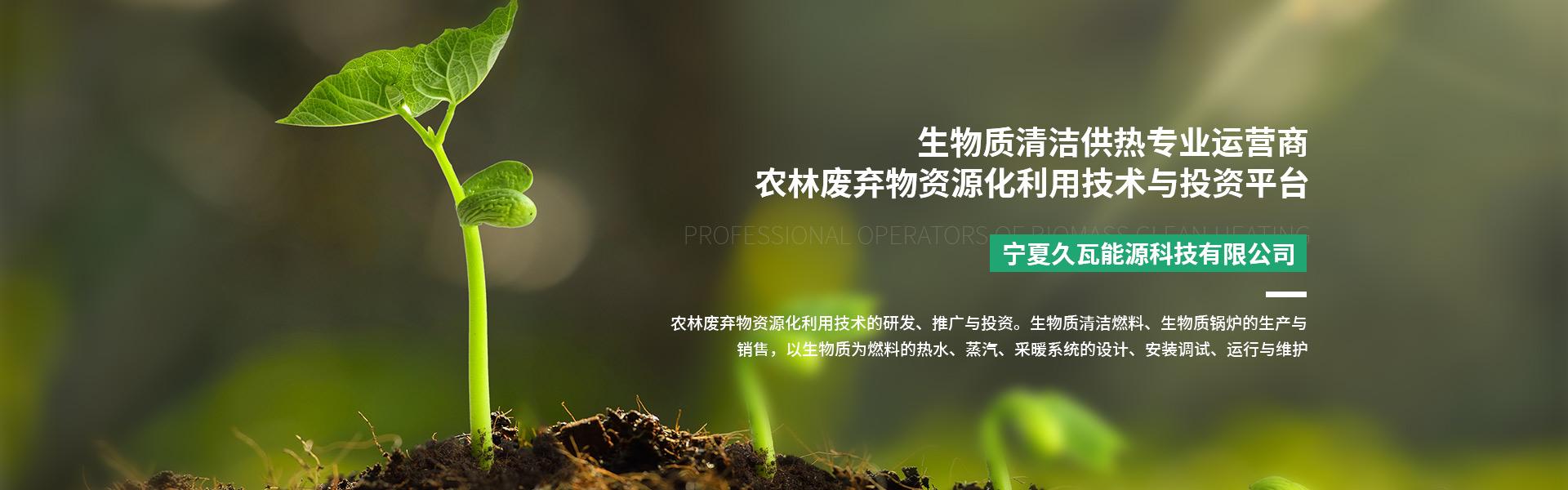 宁夏生物质燃料厂家