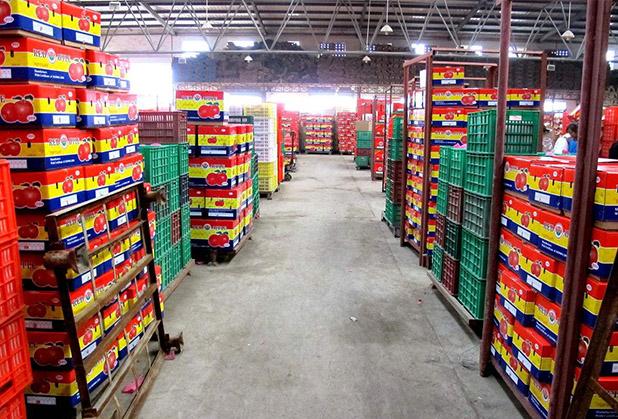果蔬冷库厂家——保鲜冷库日常保养注意事项