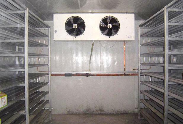 速冻冷库和冷冻库的差别,亲们知道有哪些吗?