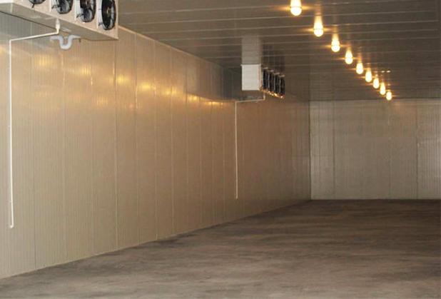 老年活动室成了鲜花冷藏库 那它是否属于违建呢?