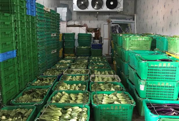 成都果蔬冷库建设的保鲜有哪些卫生要求?
