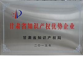甘肅省知識產權優勢企業
