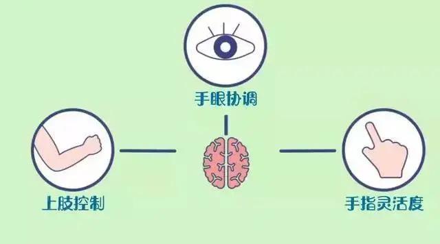 手部功能的发展与日常生活的能力有着密切的关系