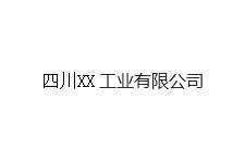四川XX工业有限公司