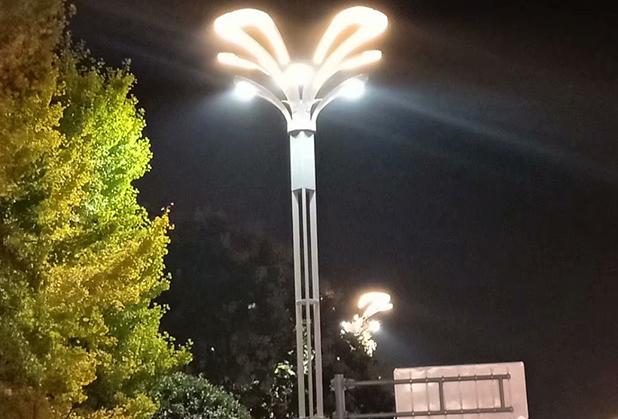 介绍四川路灯和景观灯的有什么不一样呢?