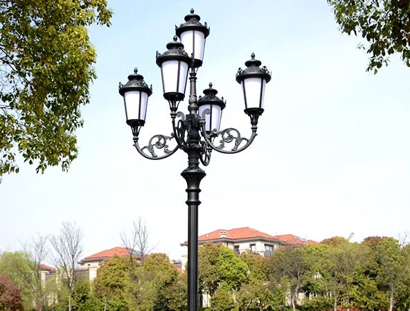 南充庭院灯案例