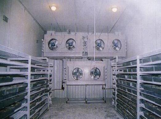 影响冷库安装质量的因素有哪些
