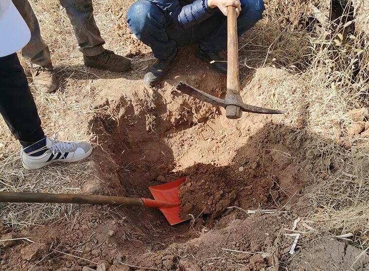 环境检测公司关于土壤检测存在的一些问题介绍