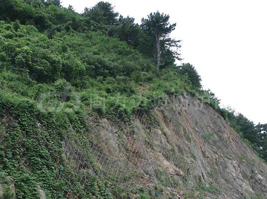 安装边坡防护网的主要工序