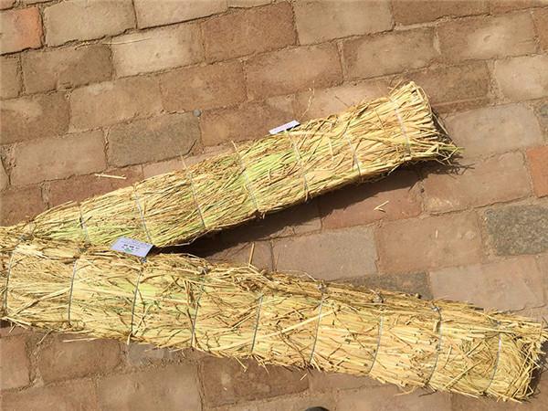 宁夏条形草支垫