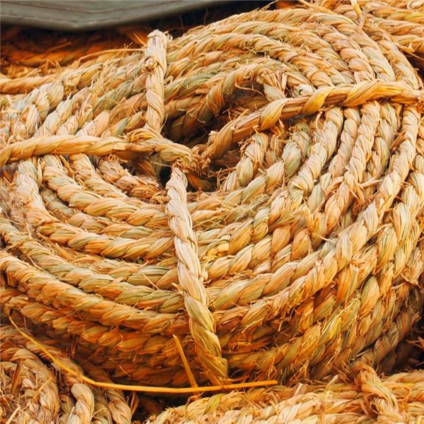 草编制品中用于编织的材料要如何采收以及其保存方法