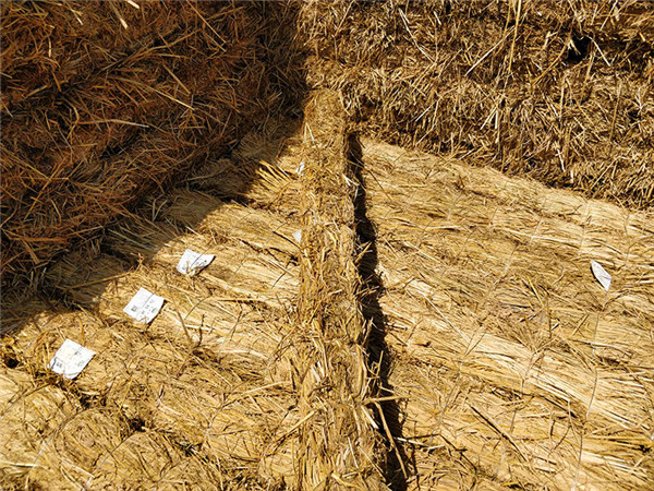 草棒的晾晒在其平时的干燥工作中是十分重要的