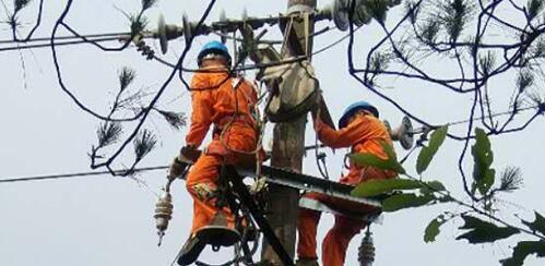電力服務對在推動農牧民旅游起到什么作用?