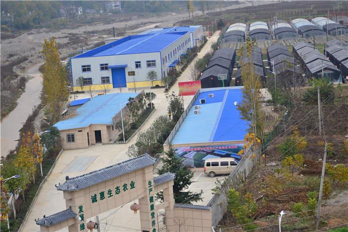 陕西生态农业