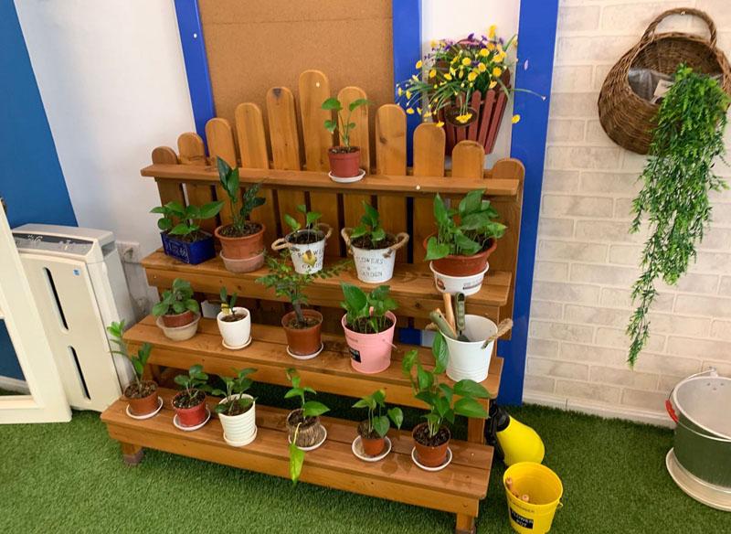 成都儿童实木家具-花架