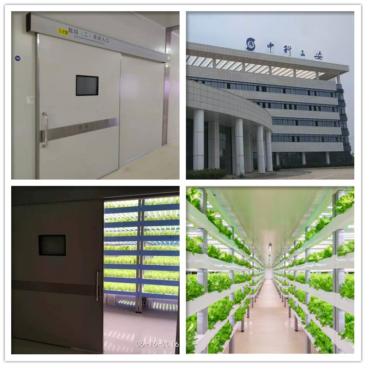 洁净自动门用于三安集团植物工厂