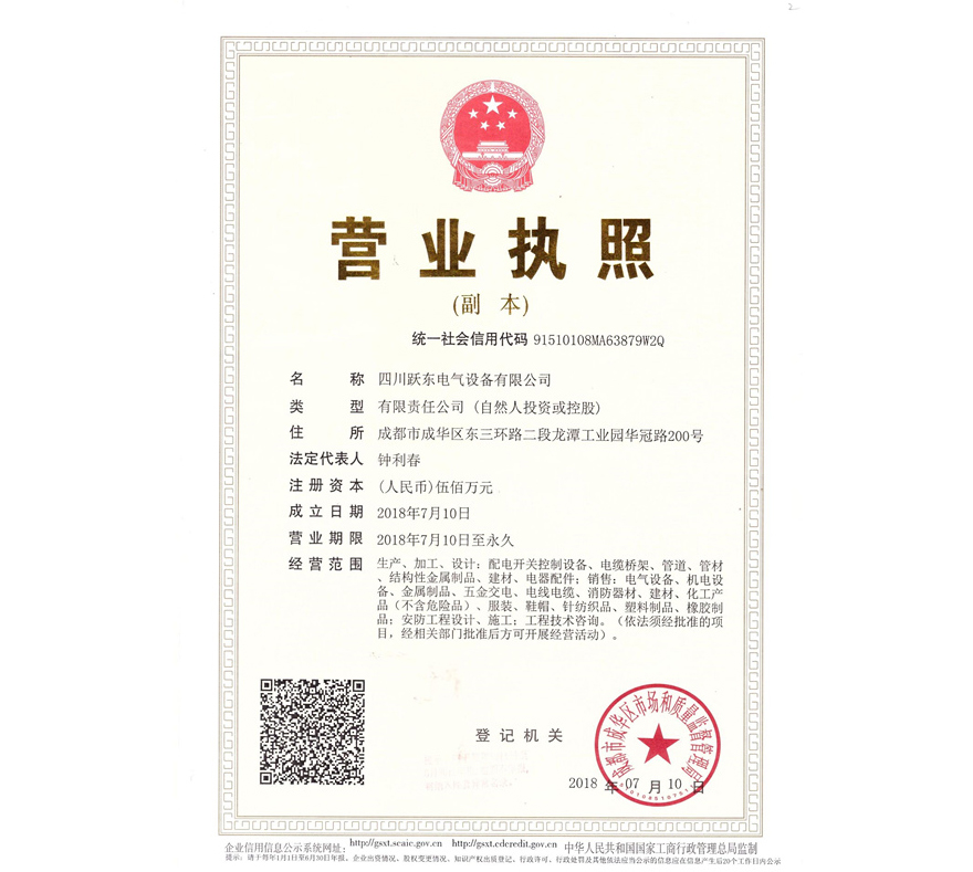四川跃东电气设备有限公司营业执照