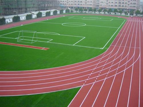常见的成都塑胶跑道分类和特点