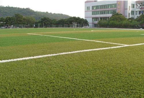 成都人造草坪质量标准有哪些?