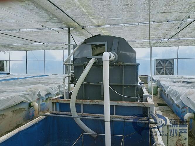 养虾设备案例:过滤池
