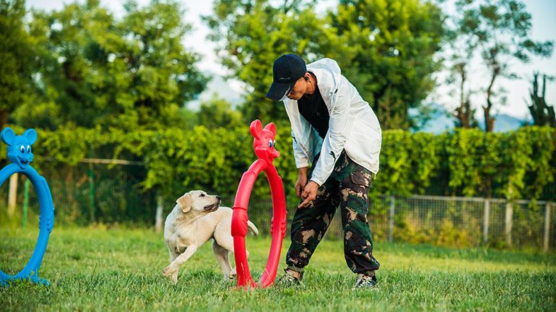 西安宠物公园