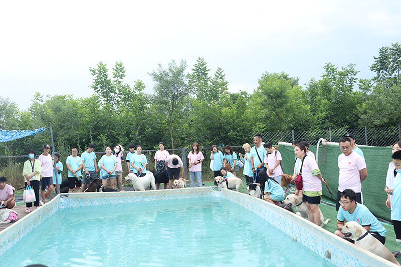 西安宠物公园(简介篇)