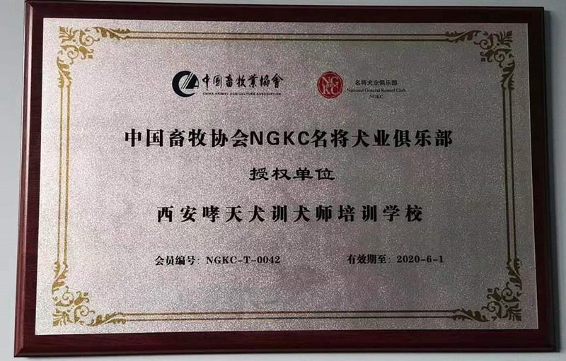 中国畜牧业协会NGKC名将犬业俱乐部授权单位