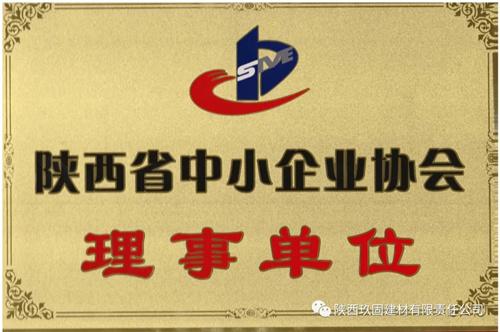 我司被陕西省中小企业协会评定为理事单位
